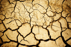 Cracked ground. Cracked and arid mud ground stock images