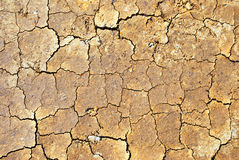 Cracked ground. In the absence of rain royalty free stock photos