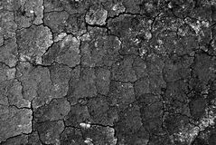 Cracked ground. Black abstract cracked ground for background stock photo