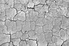 Cracked ground. A big cracked ground in black&white Royalty Free Stock Images