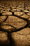 Cracked ground. The cracked ground for background royalty free stock images