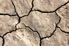 Cracked Ground. Abstract background of cracked dirt Stock Photo