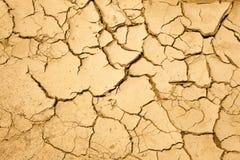 Cracked ground Royalty Free Stock Image