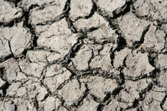 Cracked ground. Dried, cracked ground after drought Royalty Free Stock Images