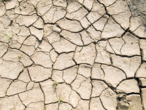 Cracked ground. The cracked ground texture pattern stock photo