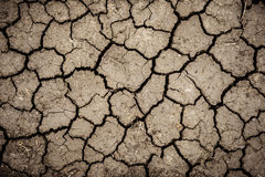 Cracked ground for background Royalty Free Stock Images