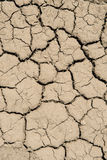 Cracked Ground Background Stock Images