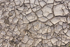 Cracked Ground. Background. Dry mud. Global warming Stock Images