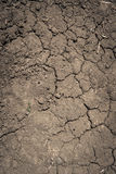 Cracked Ground Background Royalty Free Stock Photography