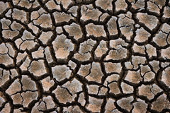 Cracked ground. Stock Images