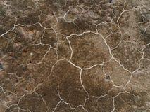 Cracked ground. Stock Image