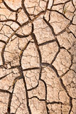 Cracked ground caused by drought. Impact of global warming conce Stock Photography