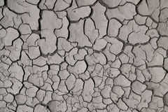 Cracked ground Royalty Free Stock Photo