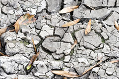 Cracked Ground Detail. Dry Soil. Dry up Earth. Cracked Ground Detail stock photos