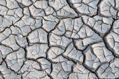 Cracked ground. Stock Photo