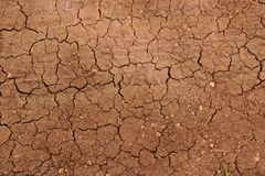 Cracked ground in drought Royalty Free Stock Images