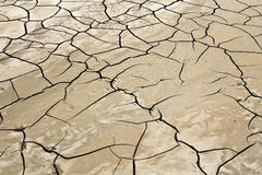 Cracked ground. Cracked dry earth in the desert brown Royalty Free Stock Image