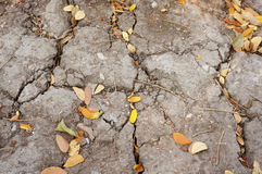 Cracked ground and dry leaves texture Stock Photography