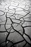 Cracked ground: the effects of drought stock photos