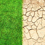 Cracked ground and grass. Half the frame is lush green grass and the other half is cracked dry desert sand Royalty Free Stock Photos