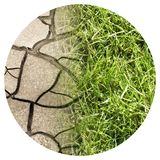 Cracked ground and green meadow - climate change concept image - Round icon concept image - Photography in a circle.  royalty free stock photos