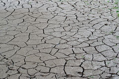 Cracked ground, soil salinity, ecological disaster Stock Image