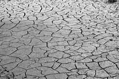 Cracked ground, soil salinity, ecological disaster Stock Photography