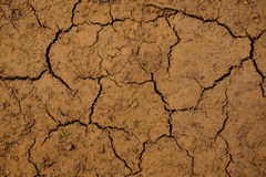 The cracked ground,  Soil texture and dry mud Stock Photos