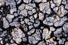 Cracked ground. Royalty Free Stock Images