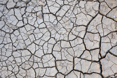 Cracked ground. Structure of the cracked earth stock photography
