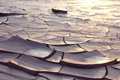 Cracked ground at sunset light Stock Photography