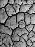 Cracked ground surface. Background, top view Stock Image