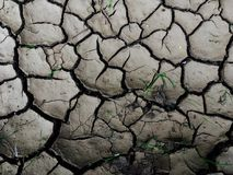 Cracked ground surface. Background, top view Royalty Free Stock Photo