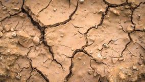 Cracked ground surface Stock Image