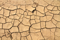 Cracked ground texture. In desert stock photography