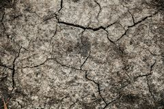 Cracked ground texture. Background of dry ground with cracks stock photo