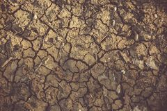 Cracked ground texture royalty free stock images