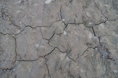 The cracked ground in Thailand Stock Image