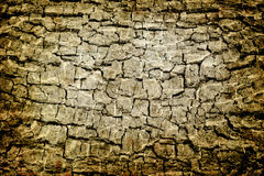 Cracked grunge background w Royalty Free Stock Image