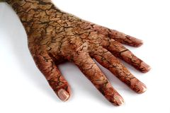 Free Cracked Hand Stock Photography - 9530472