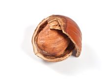 Cracked hazelnut Royalty Free Stock Photo