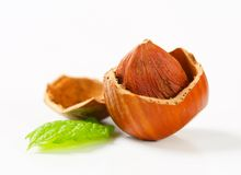 Cracked hazelnut Royalty Free Stock Photography