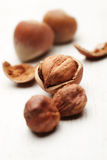 Cracked Hazelnuts Royalty Free Stock Photography