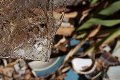 Cracked Ice, Broken Pottery Royalty Free Stock Photo