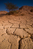 Cracked Land. Cracked red land in Eilat desert, south Israel Stock Photos