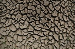 Cracked land. The cracked land, gray background Stock Photography