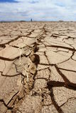 Cracked Land Stock Images