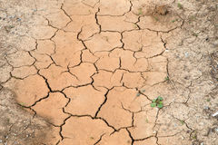 Cracked land caused by drought Stock Photos