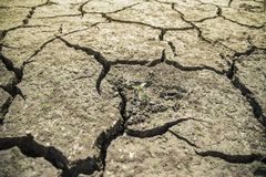 A cracked land Stock Image