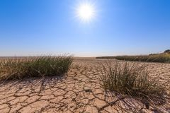 Cracked land, scanty vegetation, blue sky and bright sun as a symbol of drought Royalty Free Stock Photos